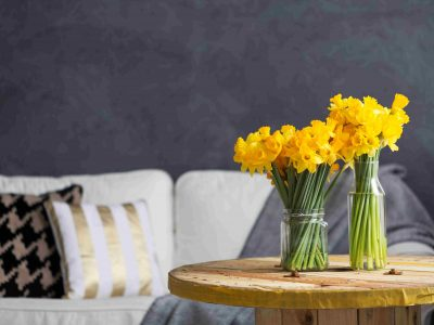 Daffodils in living room